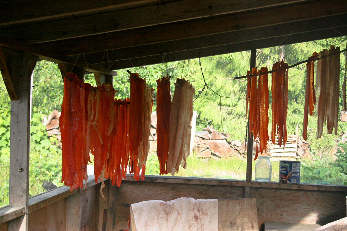 Hanging salmon in the village of Gingolx, British Columbia
